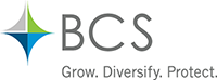 BCS Financial Corporation