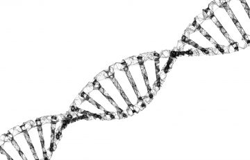 Gene Therapy Poses Volatility Concerns for the Self-Insured Community: An Actuarial View