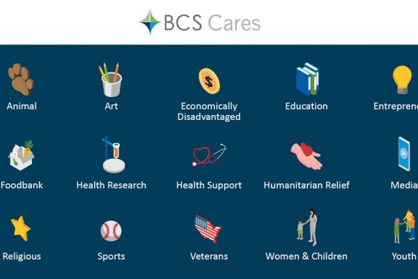 BCS Cares charity categories