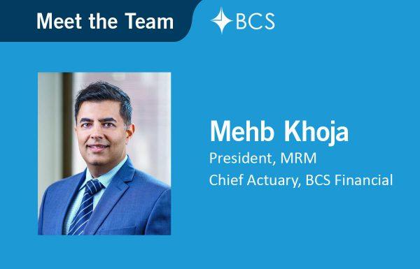 Meet the Team Mehb Khoja